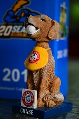 Bobblehead of Chase, The Trenton Thunder Bat Dog