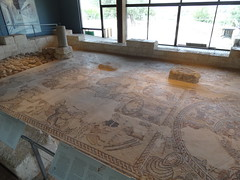 Zippori - ancient synogogue mosaic floor
