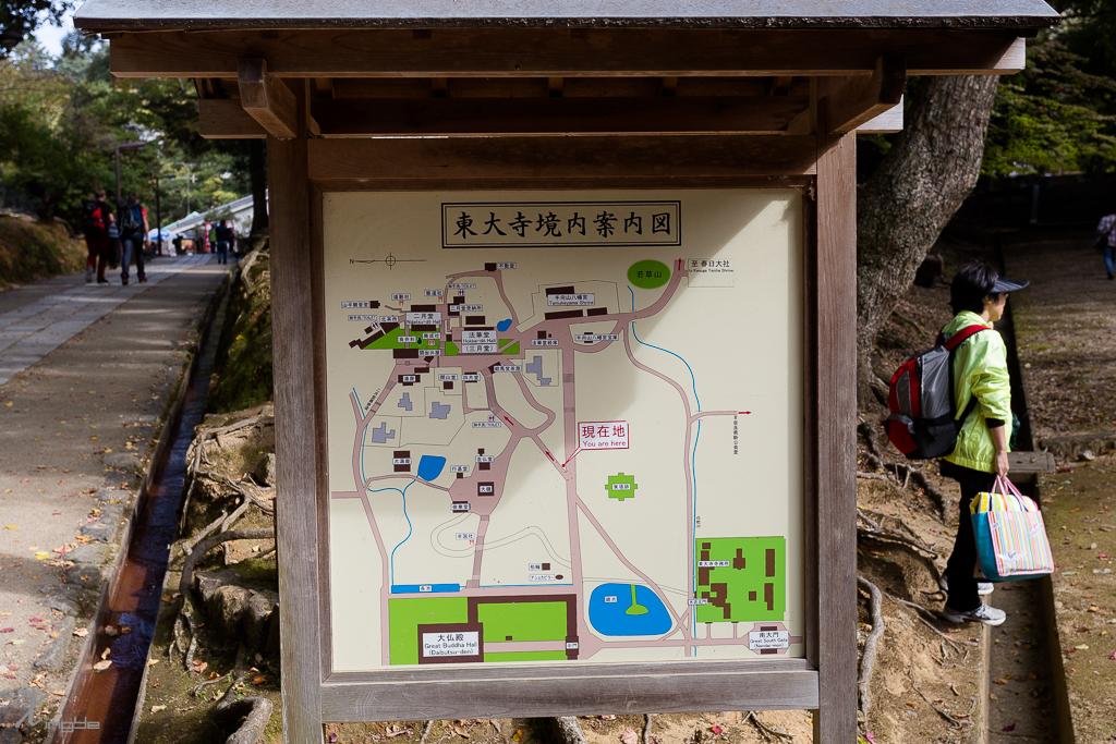 20141108-_MG_5382.jpg