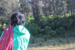 "Pendakian Sakuntala Gunung Argopuro Juni 2014 • <a style=""font-size:0.8em;"" href=""http://www.flickr.com/photos/24767572@N00/26886930420/"" target=""_blank"">View on Flickr</a>"