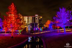 Dallas Event Photographer-9790