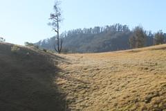 "Pendakian Sakuntala Gunung Argopuro Juni 2014 • <a style=""font-size:0.8em;"" href=""http://www.flickr.com/photos/24767572@N00/26555363274/"" target=""_blank"">View on Flickr</a>"