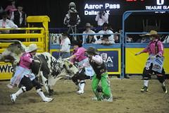 5-385 Bull FIghter