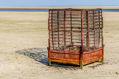 """My Rusty Cage • <a style=""""font-size:0.8em;"""" href=""""http://www.flickr.com/photos/73234388@N04/29615883933/"""" target=""""_blank"""">View on Flickr</a>"""