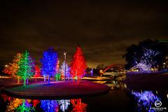 Dallas Event Photographer-9801