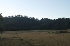 "Pendakian Sakuntala Gunung Argopuro Juni 2014 • <a style=""font-size:0.8em;"" href=""http://www.flickr.com/photos/24767572@N00/26557178573/"" target=""_blank"">View on Flickr</a>"