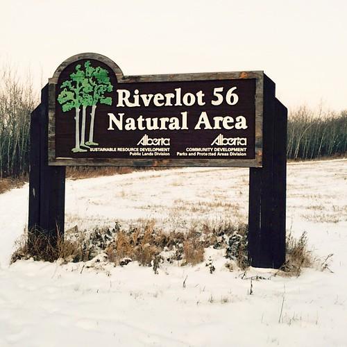 Go for a Walk. Excellent trails abound at Upper Riverlot 56.    #StAlbert #RiverLot56