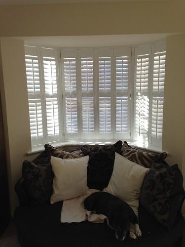 Full height bay shutters, Bures, Suffolk