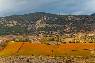 Contrastes otoñales en Sierra de Segura