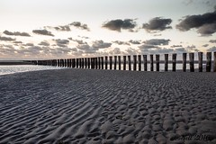 "Ameland • <a style=""font-size:0.8em;"" href=""http://www.flickr.com/photos/139847504@N02/29506097354/"" target=""_blank"">View on Flickr</a>"
