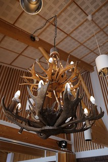Really cool Reindeer antler lights