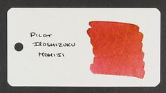 Pilot Iroshizuku Momiji - Word Card