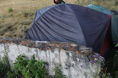 "Pendakian Sakuntala Gunung Argopuro Juni 2014 • <a style=""font-size:0.8em;"" href=""http://www.flickr.com/photos/24767572@N00/27066494742/"" target=""_blank"">View on Flickr</a>"
