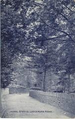 Lodgemoor Road