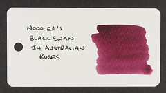 Noodler's Black Swan in Australian Roses - Word Card