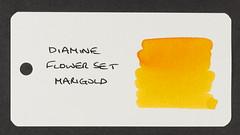 Diamine Flower Set Marigold - Word Card