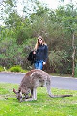 Canberra Botanic Garden