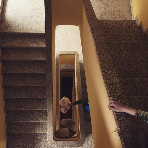 #falling #Bettwäsche im #Treppenhaus