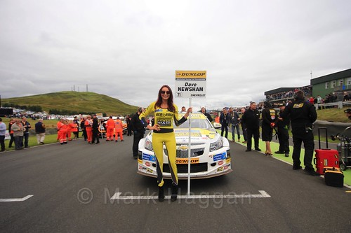 Dave Newsham on the grid during the BTCC Knockhill Weekend 2016