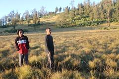 "Pendakian Sakuntala Gunung Argopuro Juni 2014 • <a style=""font-size:0.8em;"" href=""http://www.flickr.com/photos/24767572@N00/27128186726/"" target=""_blank"">View on Flickr</a>"