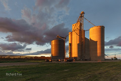 """Sunset Silos • <a style=""""font-size:0.8em;"""" href=""""http://www.flickr.com/photos/35609298@N06/18161821618/"""" target=""""_blank"""">View on Flickr</a>"""