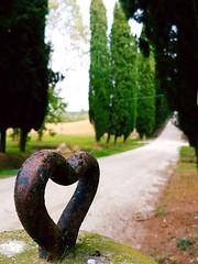 Osimo - Filottrano