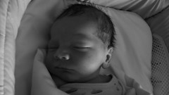 ramone napping