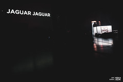 20190112 - Jaguar Jaguar | Final Festival Termómetro @ Cinema São Jorge