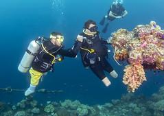 Chris Middleton bi-lateral amputee divemaster and Josh Boggi Triple Amputee PADI Rescue Diver 0811_19a
