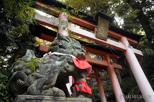 Fushimiinari shrine 伏見稲荷大社