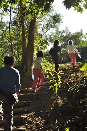 【爬山】2012元旦:高雄美濃「雙溪熱帶樹木園」(7.5ys)