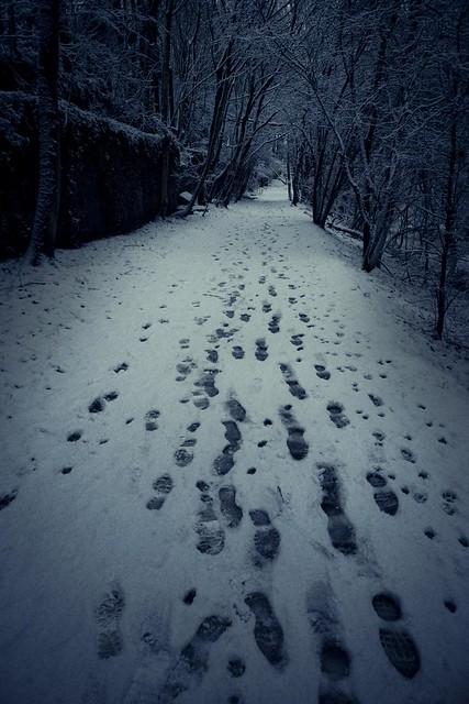 Nightmare After Christmas (Grivegnée, Belgique) - Photo : Gilderic