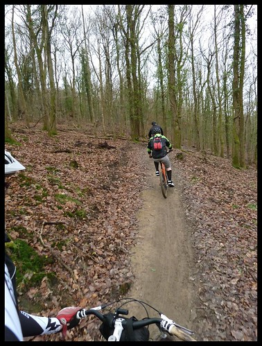 the Forest of Dean ride by rOcKeTdOgUk