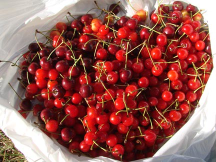 PieCherries
