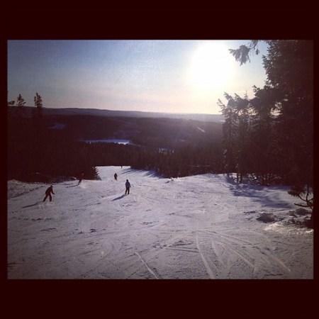 Fin skiddag