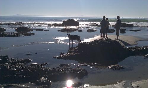 Beach chat
