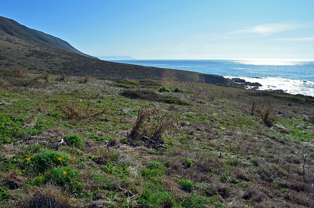View south towards Morro Bay and Montaña de Oro State Park