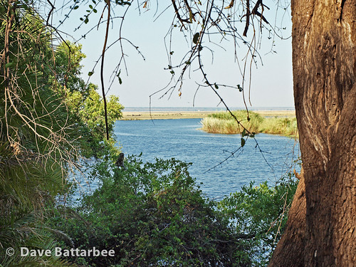 Last look at the Chobe River