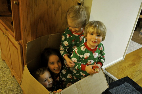 cousins in a box