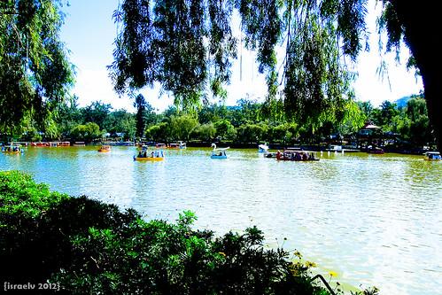 Idyllic Day at Burnham Park by israelv