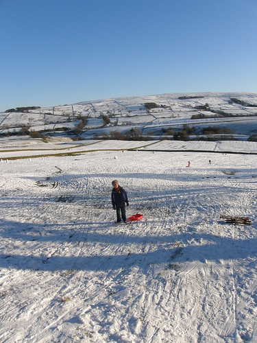 The sledging field