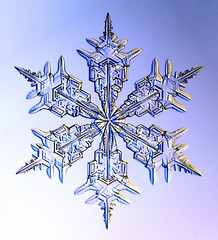 snowflake from snowcrystals.com