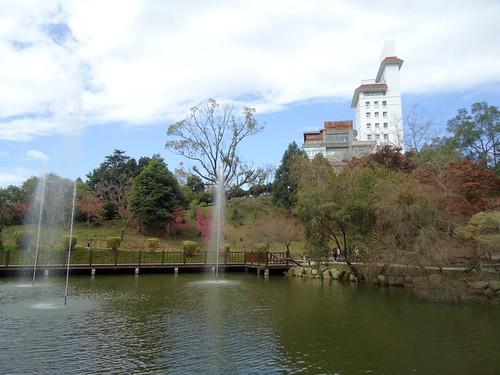 2012東勢林場櫻花36