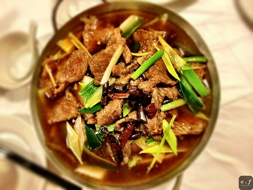 New Szechuan Gourmet  0008