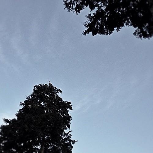 ふと空を見上げてみた。なぜかモノクロの空が… #iphonography #instagram #iphone4s