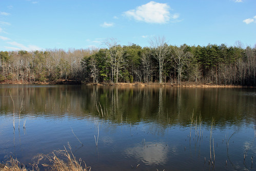 Lake at Crowders by aimeesblog
