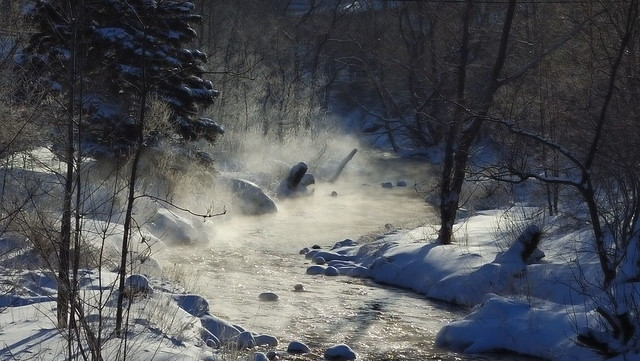 Rennies River morning