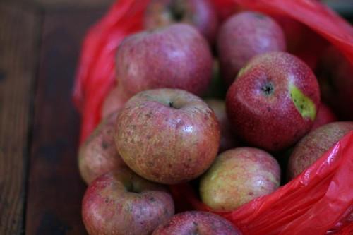Farm-Fresh Apples