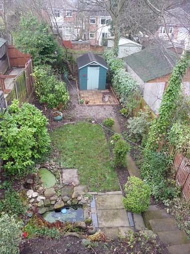 Our garden, January 2012