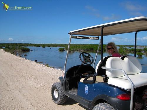 golf carts in belize